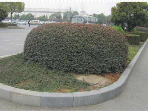 武汉市沌阳大道